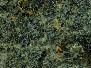 Erizos de mar en la marea baja, de Miquel Barceló